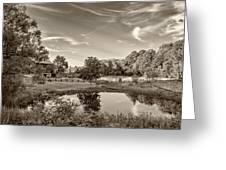 Evening Pond Sepia Greeting Card
