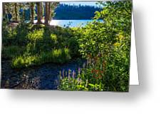 Evening Shadows At Lake George Greeting Card