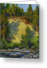 Evening Shadows Teanaway River Greeting Card