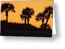 Evening Silhouette Greeting Card