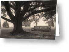 Evening Swing - Oak Tree - Altus Arkansas Greeting Card
