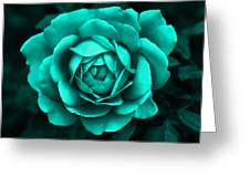 Evening Teal Rose Flower Greeting Card
