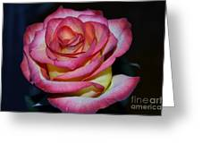 Event Rose Too Greeting Card