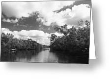 Everglades Dock Greeting Card