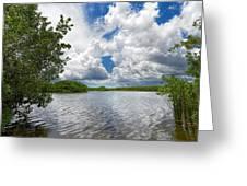 Everglades Lake - 0278 Greeting Card