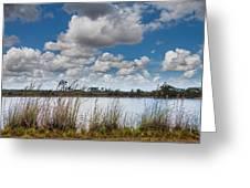 Everglades Lake 6853 Greeting Card