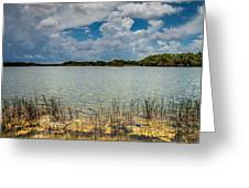 Everglades Lake 6930 Greeting Card by Rudy Umans