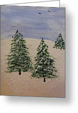 Evergreen Winter Greeting Card