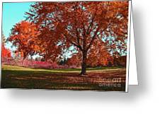Every Year I Miss Autumn After It Is Over Greeting Card