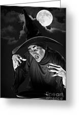 Evil Witch Under A Full Moon Greeting Card
