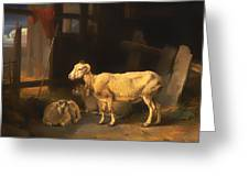 Ewe And Lambs Greeting Card