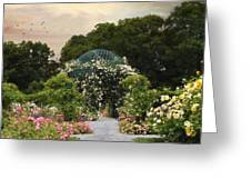 Exhibit Of Roses Greeting Card