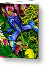 Exotic Blue Greeting Card