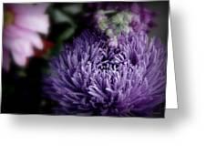 Exotic Purple Flower Greeting Card