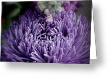 Exotic Purple Flower Two Greeting Card