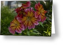 Exotic Spring Flowers Greeting Card