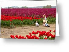 Exploring The Tulip Fields Greeting Card