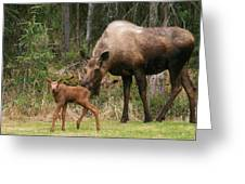 Exploring With Mom Greeting Card