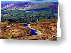 Extasy In Cairngorms National Park Scotland Greeting Card