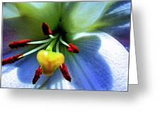 Extrem Lily Heart Greeting Card