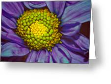 Extreme Flower Greeting Card