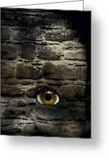 Eye In Brick Wall Greeting Card