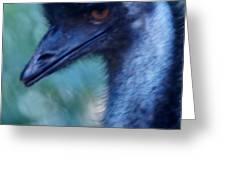 Eye Of The Emu Greeting Card by DerekTXFactor Creative
