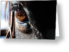 Eyeball Reflection Greeting Card