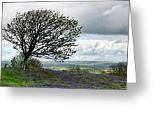 Eype Downs Overlook Greeting Card