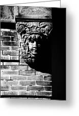 Face Of Stone Greeting Card