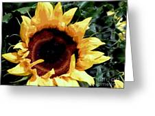 Facing The Sun Greeting Card
