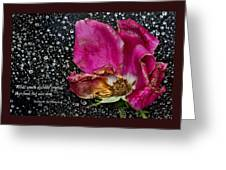 Faded Rose - Youth And Age Greeting Card
