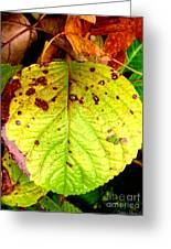 Fading Hydrangea Leaf Greeting Card