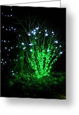Fairy Light Greeting Card