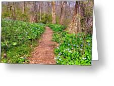 Fairy Paths Greeting Card