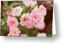 Fairy Roses Greeting Card