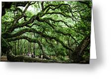 Fairy Tale Branches Greeting Card