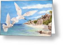 Fairy Terns Ladigue Greeting Card