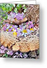Fairy Trumpets Greeting Card