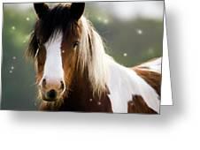 Fairytale Pony Greeting Card