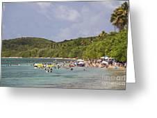 Fajardo Beach In  Puerto Rico Greeting Card