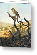 Falcon In The Sunset Greeting Card