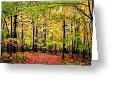 Fall 20 Greeting Card