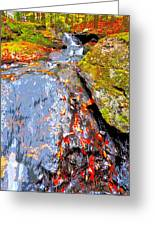 Fall 2014 Y246 Greeting Card