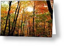 Fall 22 Greeting Card