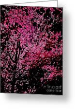 Fall Abstract Greeting Card