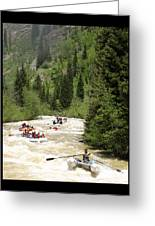 White Water Rafting On The Animas Greeting Card