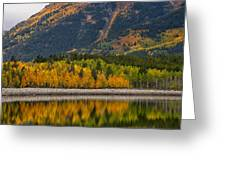 Fall Along The Forebay Greeting Card