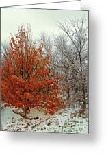 Fall And Winter 2 Greeting Card