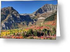 Fall At Mt. Timpanogos From Sundance - Utah  Greeting Card